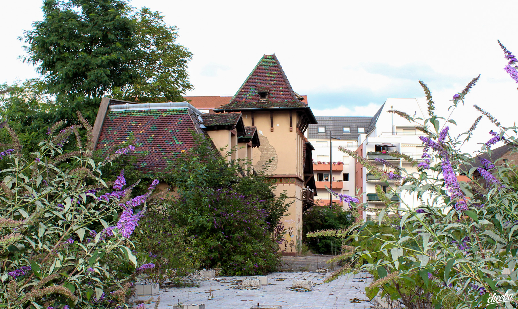 Urbex à la Brasserie Fischer de Schiltigheim (2016) - Urbex Alsace