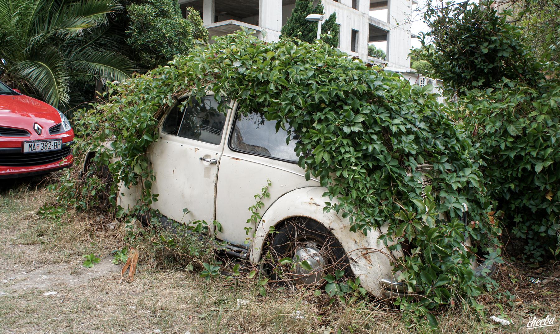 La Coccinelle Verdura, épave de coccinelle abandonnée - Urbex Croatie